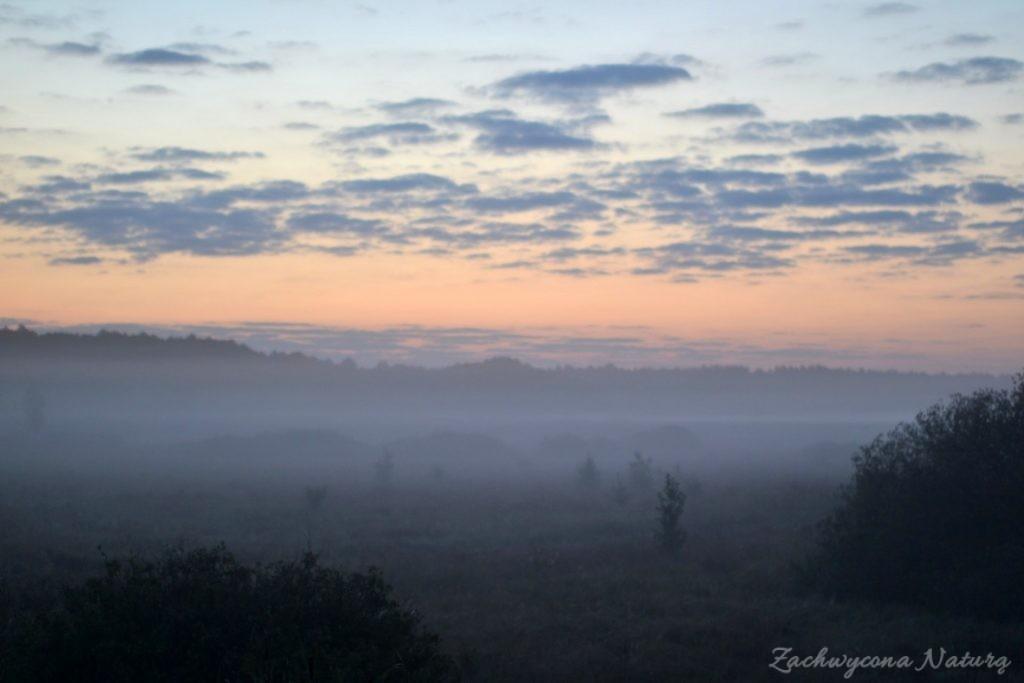 biebrzanski-park-narodowy-jesien-26