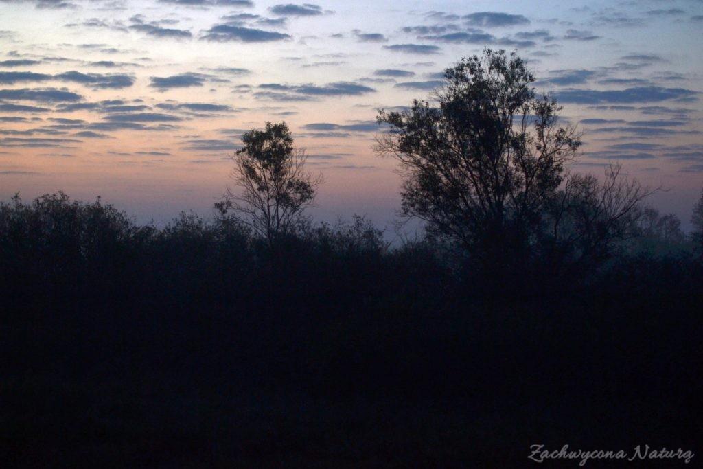 biebrzanski-park-narodowy-jesien-27