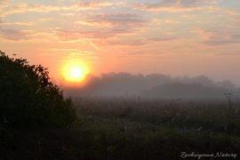 biebrzanski-park-narodowy-jesien-29