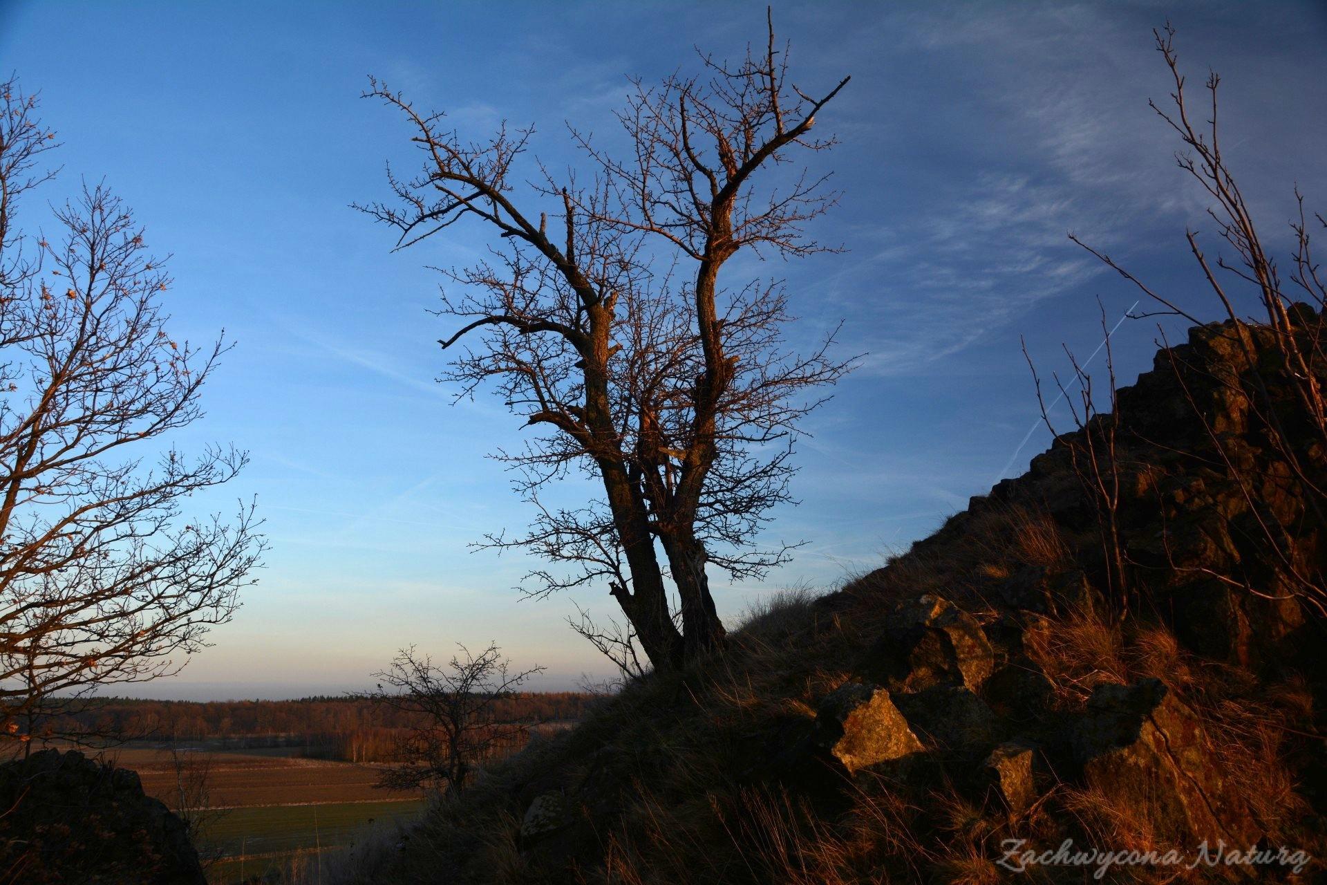 szlakiem-wygaslych-wulkanow-czartowska-skala-17