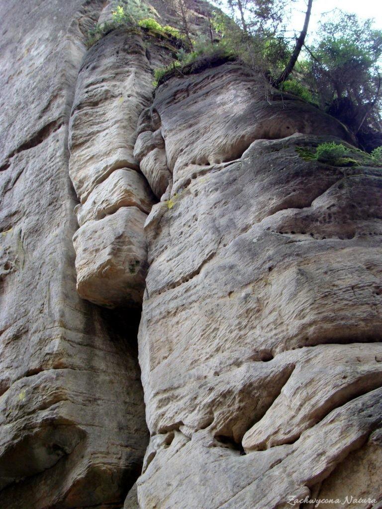 Adršpach-skalne miasto (11)