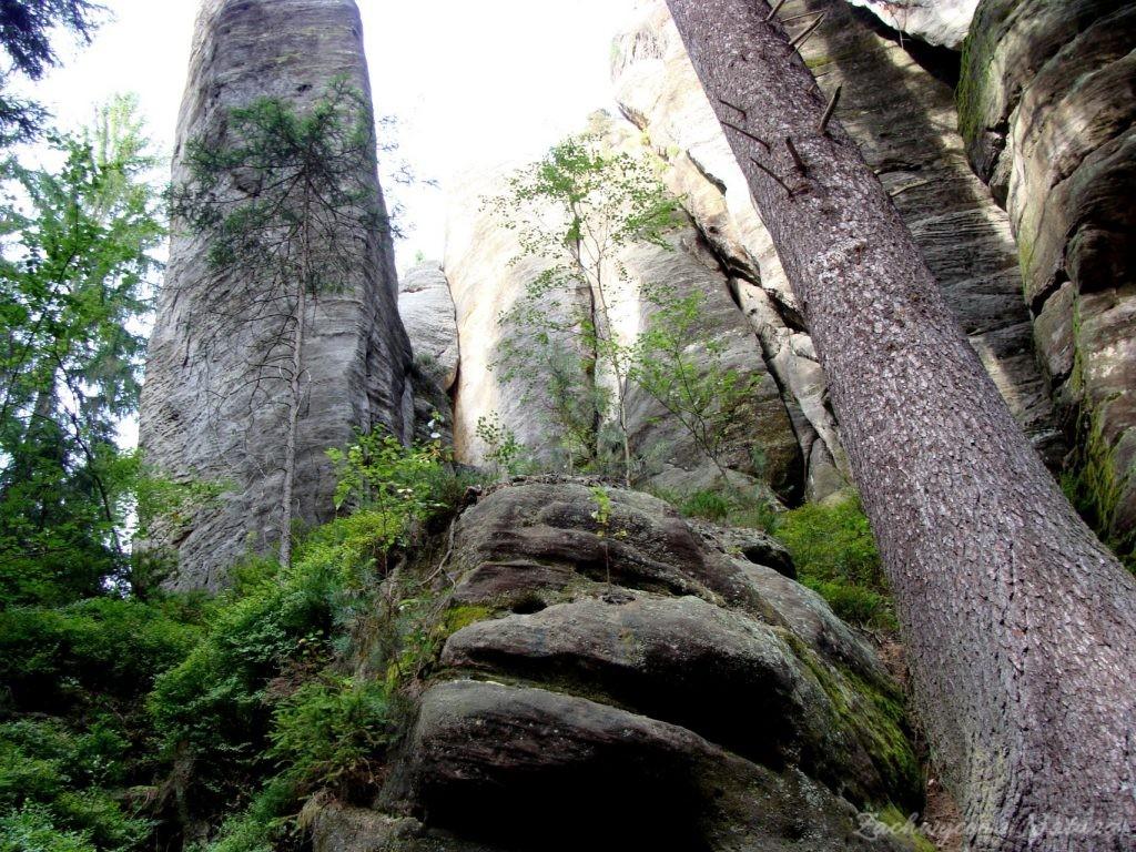 Adršpach-skalne miasto (12)