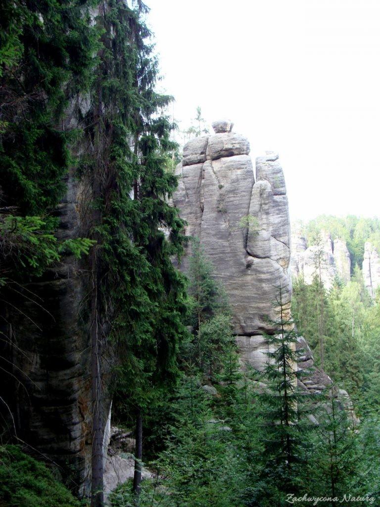 Adršpach-skalne miasto (14)