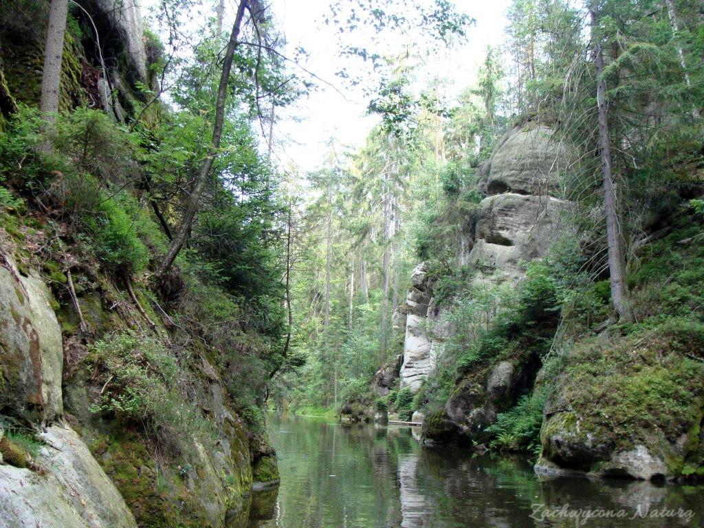 Adršpach-skalne miasto (2)