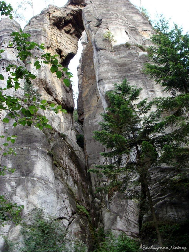 Adršpach-skalne miasto (21)