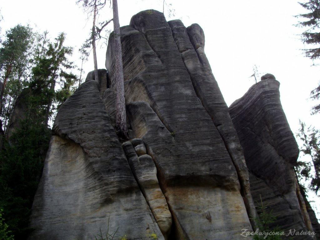 Adršpach-skalne miasto (28)