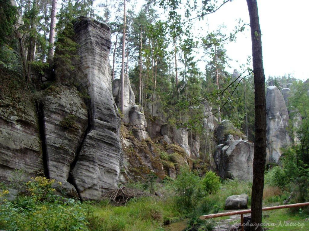 Adršpach-skalne miasto (31)