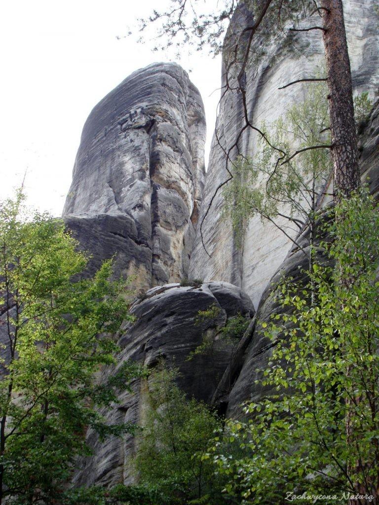 Adršpach-skalne miasto (34)