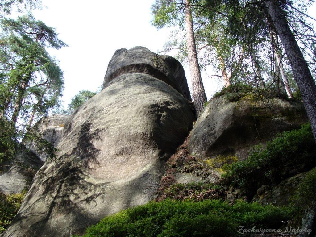 Adršpach-skalne miasto (8)