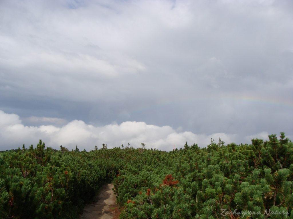 Babia Góra - kaprysy pogody (10)