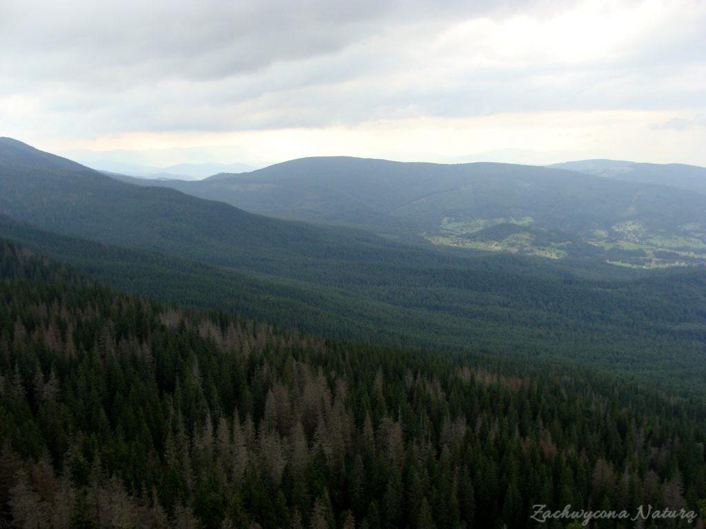 Babia Góra - kaprysy pogody (2)