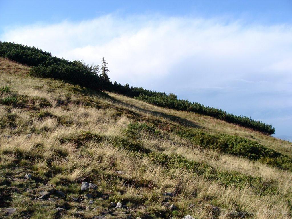 Babia Góra - kaprysy pogody (23)