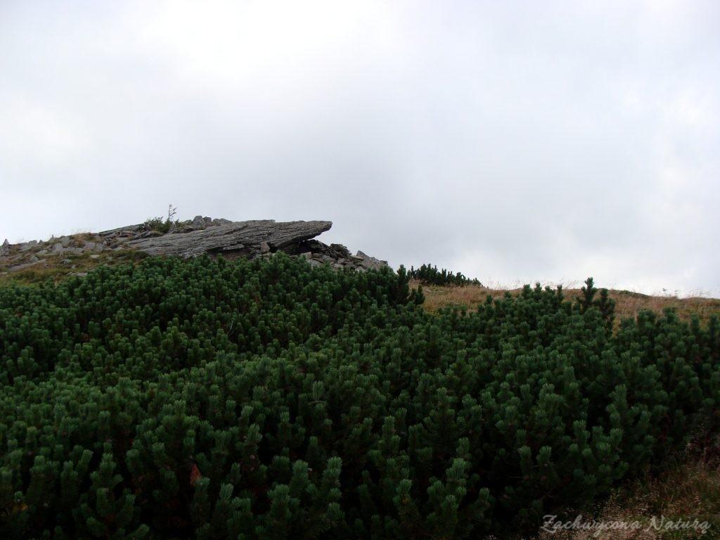 Babia Góra - kaprysy pogody (29)