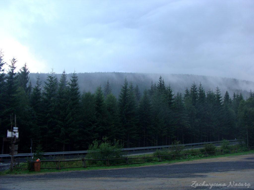 Babia Góra - kaprysy pogody (37)
