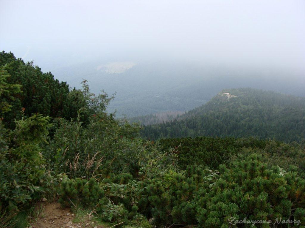 Babia Góra - kaprysy pogody (7)