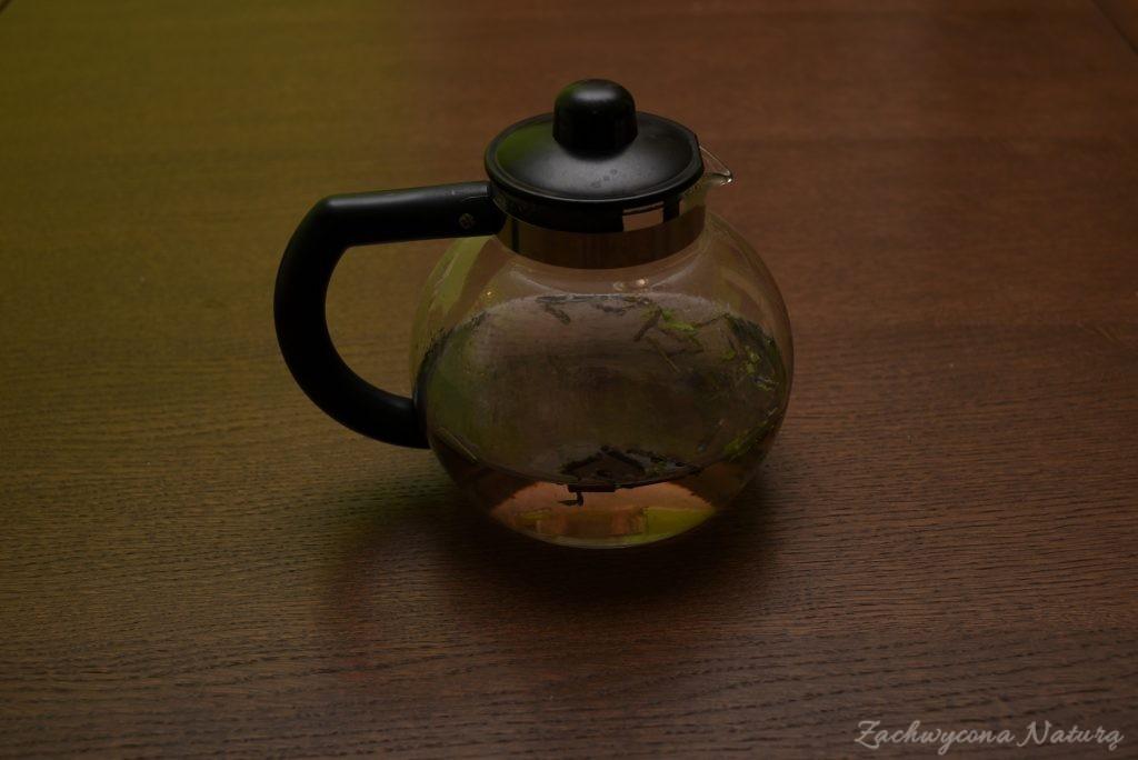 Herbatka z krzaka Spicebush o zapachu cytryny z imbirem (3)
