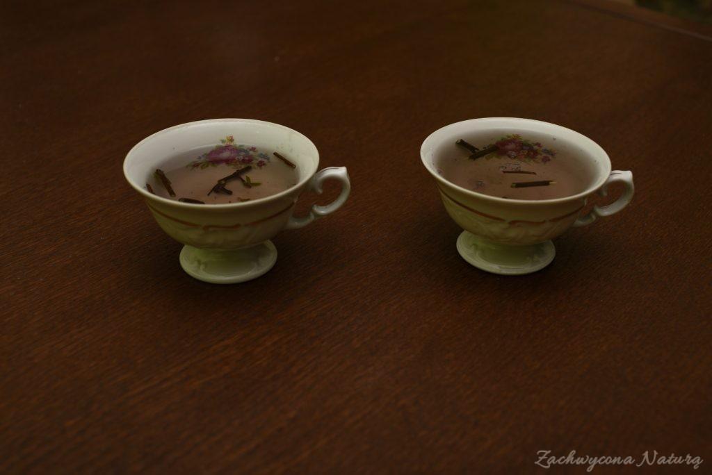 Herbatka z krzaka Spicebush o zapachu cytryny z imbirem (4)