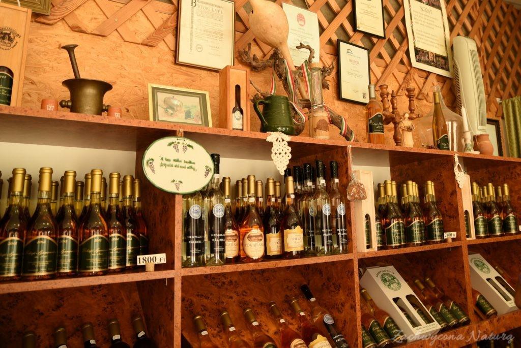 Tokaj - kraina wina (40)