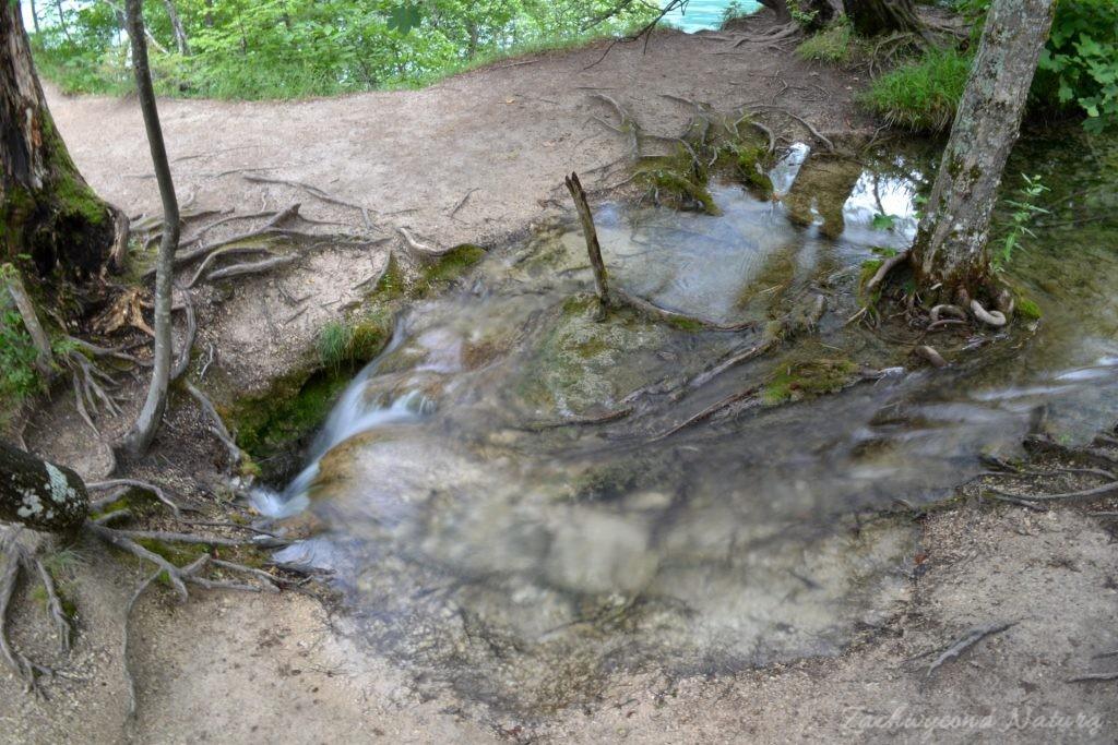 Turkusowe jeziora i piękne wodospady - Jeziora Plitwickie (10)