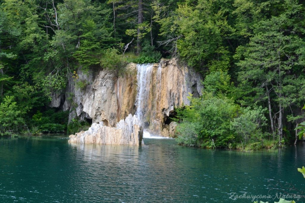 Turkusowe jeziora i piękne wodospady - Jeziora Plitwickie (13)