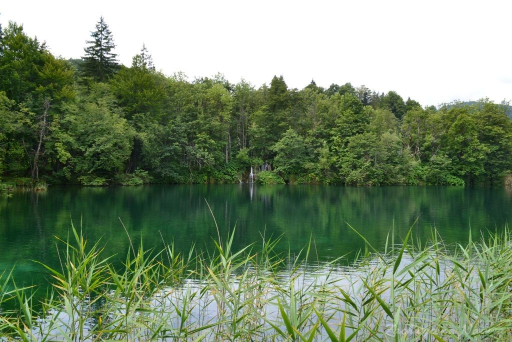 Turkusowe jeziora i piękne wodospady - Jeziora Plitwickie (24)