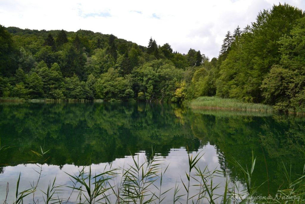 Turkusowe jeziora i piękne wodospady - Jeziora Plitwickie (26)