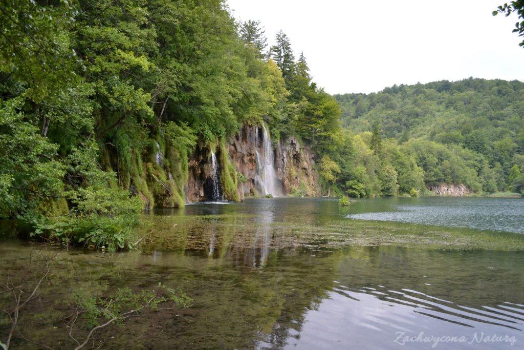 Turkusowe jeziora i piękne wodospady - Jeziora Plitwickie (29)