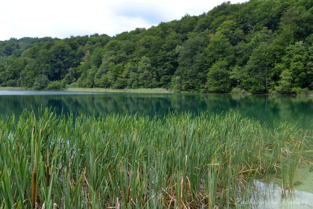 Turkusowe jeziora i piękne wodospady - Jeziora Plitwickie (3)