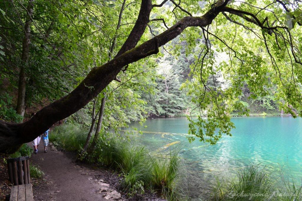 Turkusowe jeziora i piękne wodospady - Jeziora Plitwickie (35)