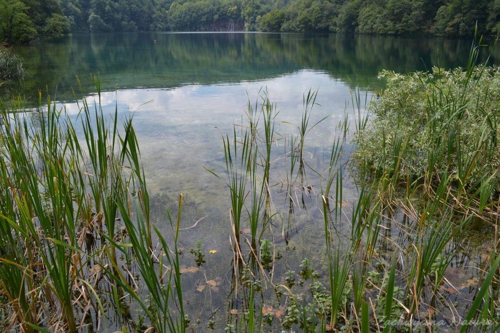 Turkusowe jeziora i piękne wodospady - Jeziora Plitwickie (40)