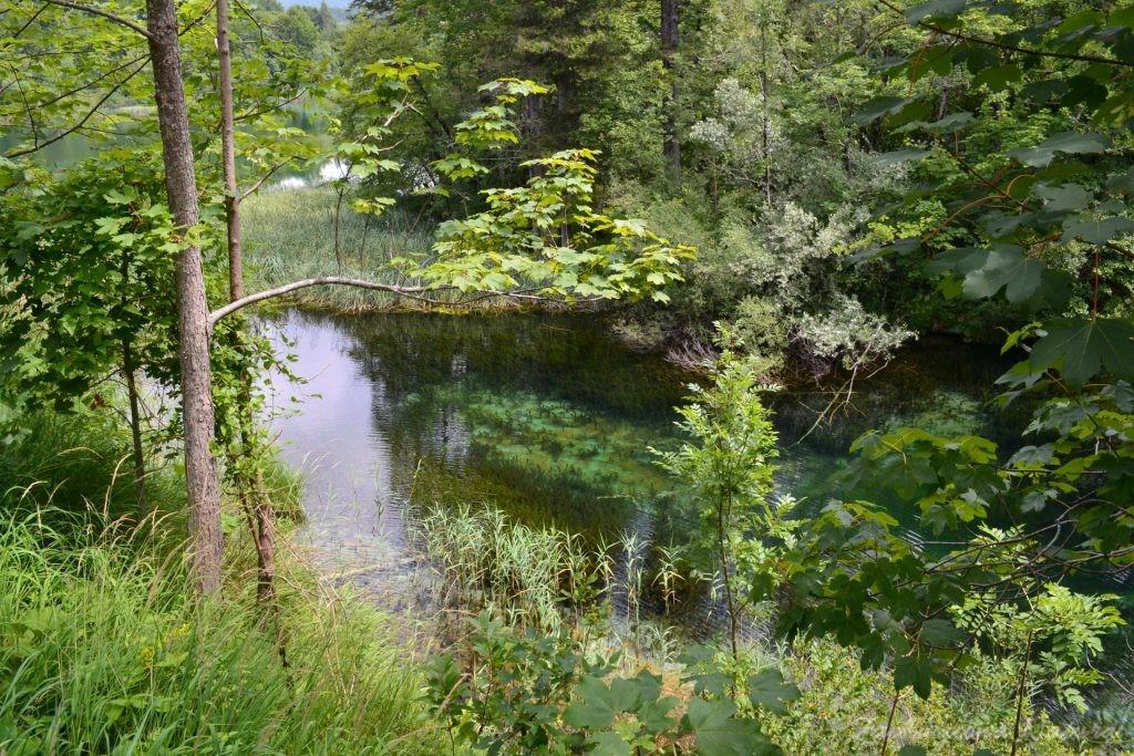 Turkusowe jeziora i piękne wodospady - Jeziora Plitwickie (43)