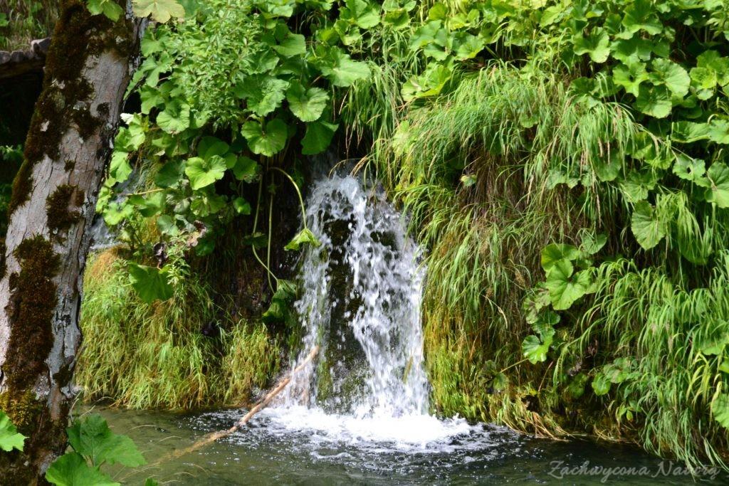 Turkusowe jeziora i piękne wodospady - Jeziora Plitwickie (44)