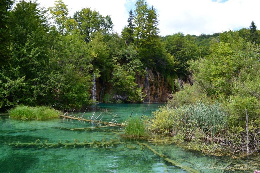 Turkusowe jeziora i piękne wodospady - Jeziora Plitwickie (53)