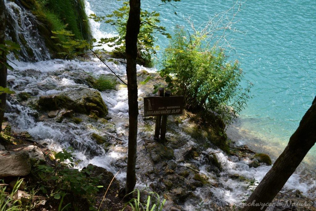 Turkusowe jeziora i piękne wodospady - Jeziora Plitwickie (65)