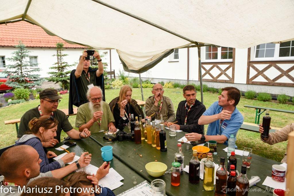 Zlot Zielarski w Czarnocinie - wspomnienie (8)