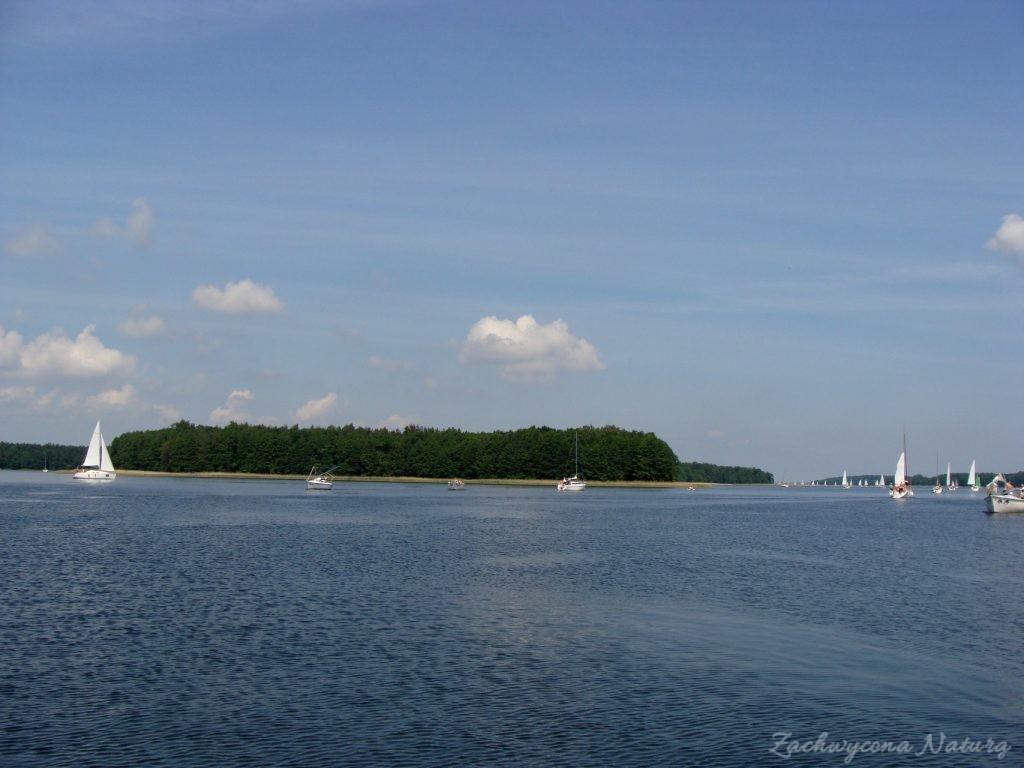 Jezioro Mamry -serce Mazur (10)