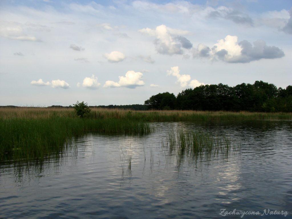 Jezioro Mamry -serce Mazur (16)