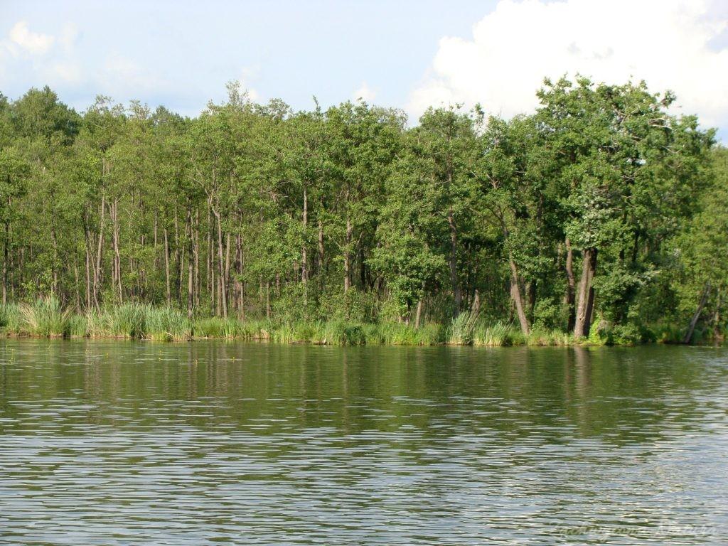 Jezioro Mamry -serce Mazur (23)
