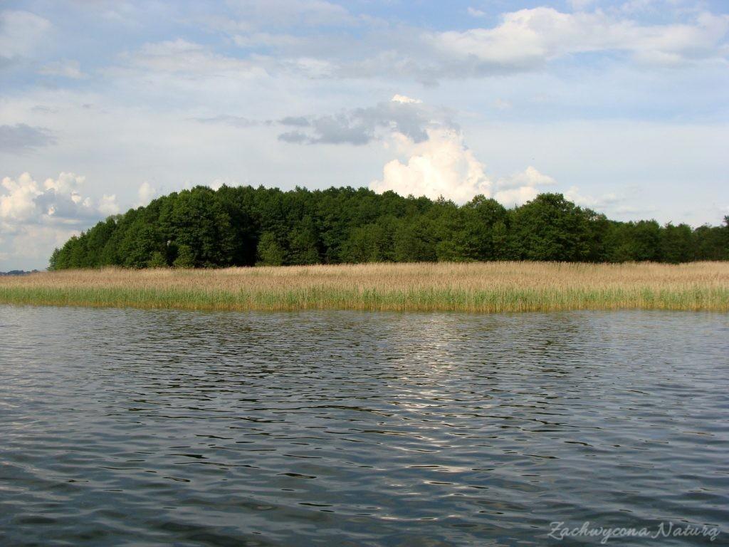 Jezioro Mamry -serce Mazur (25)