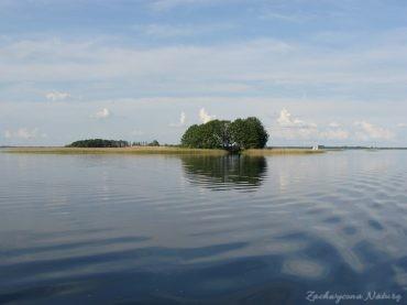 Jezioro Mamry -serce Mazur (26)