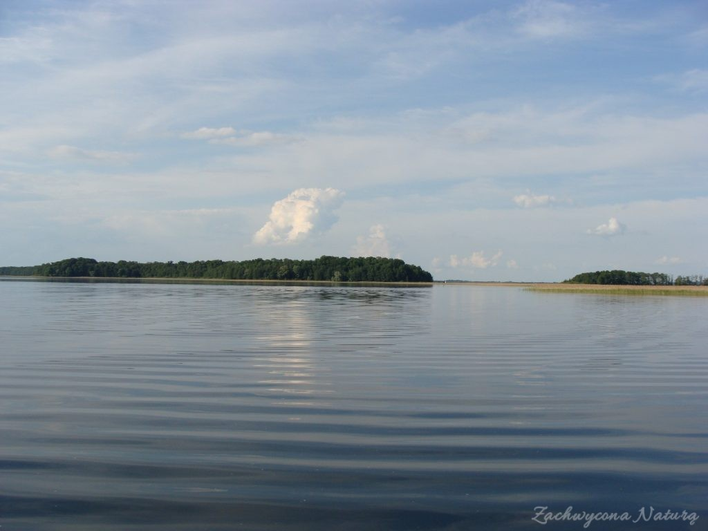 Jezioro Mamry -serce Mazur (27)