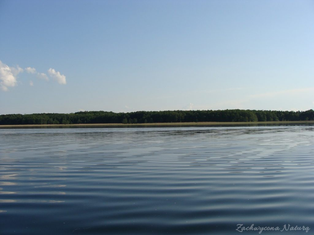 Jezioro Mamry -serce Mazur (28)