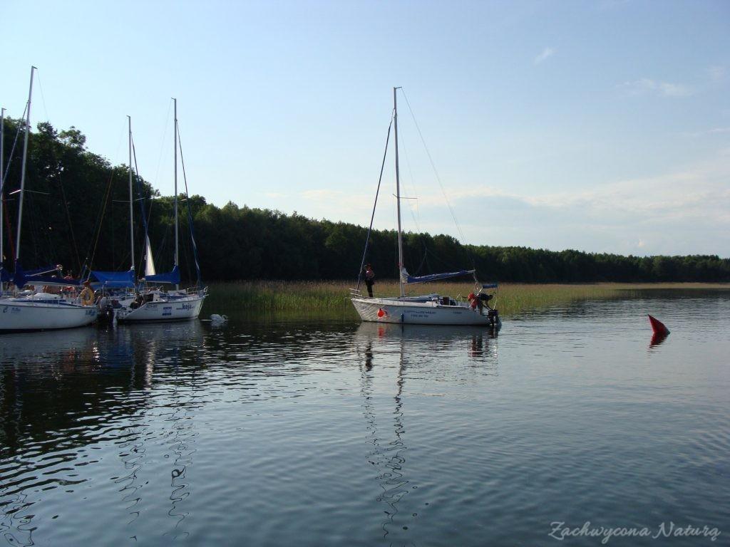Jezioro Mamry -serce Mazur (29)