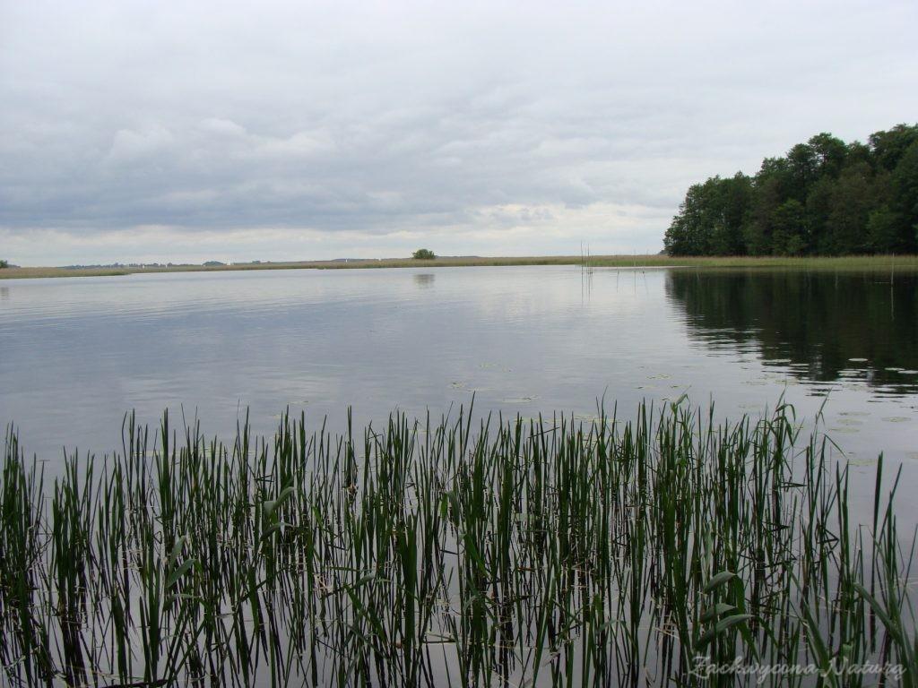 Jezioro Mamry -serce Mazur (51)