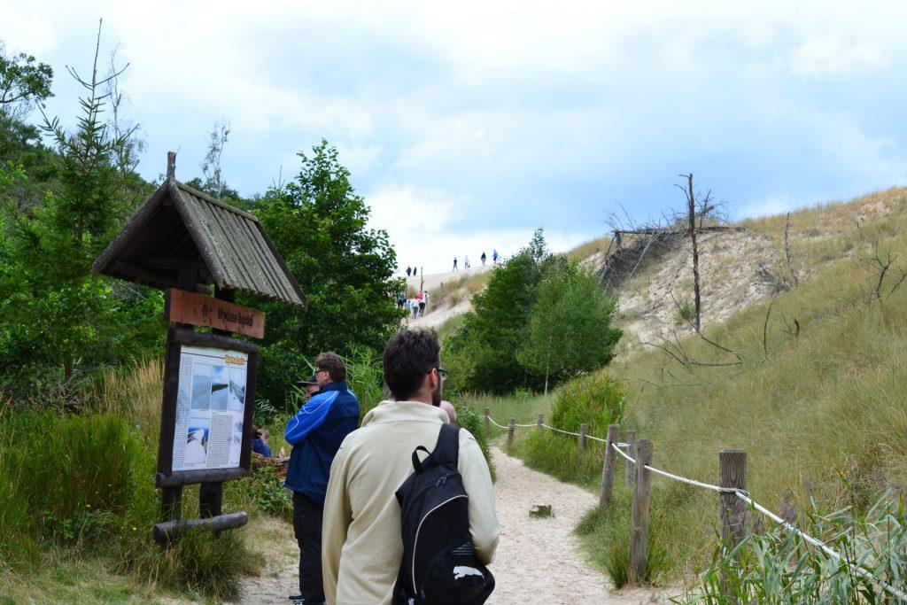 Ruchome wydmy w Słowińskim Parku Narodowym (12)