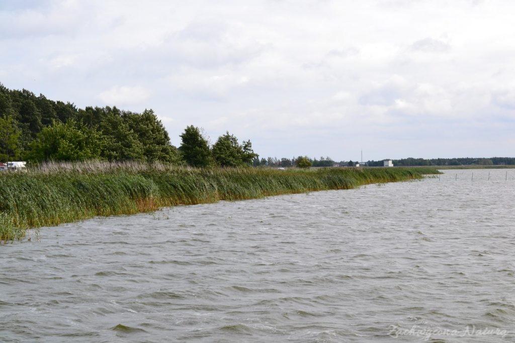 Ruchome wydmy w Słowińskim Parku Narodowym (2)