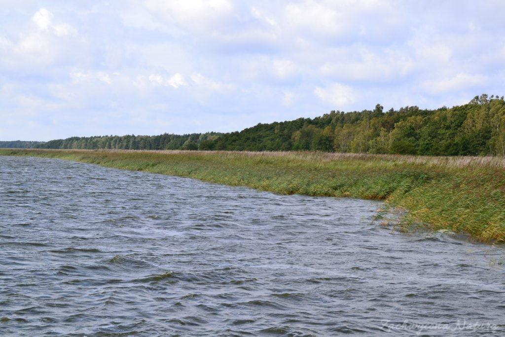 Ruchome wydmy w Słowińskim Parku Narodowym (3)