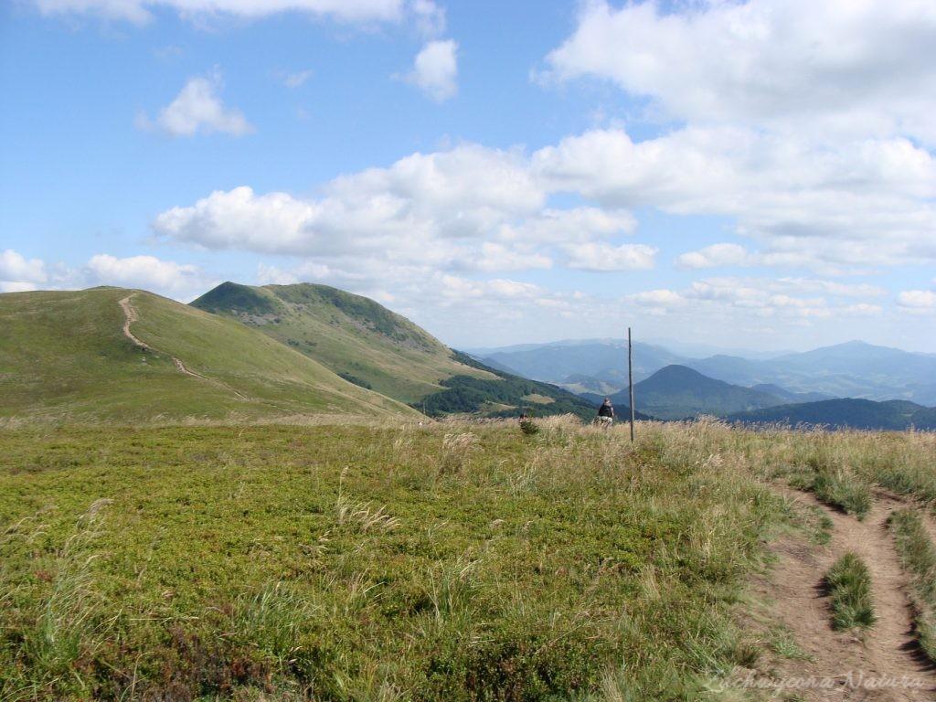 W drodze na Tarnicę (29)
