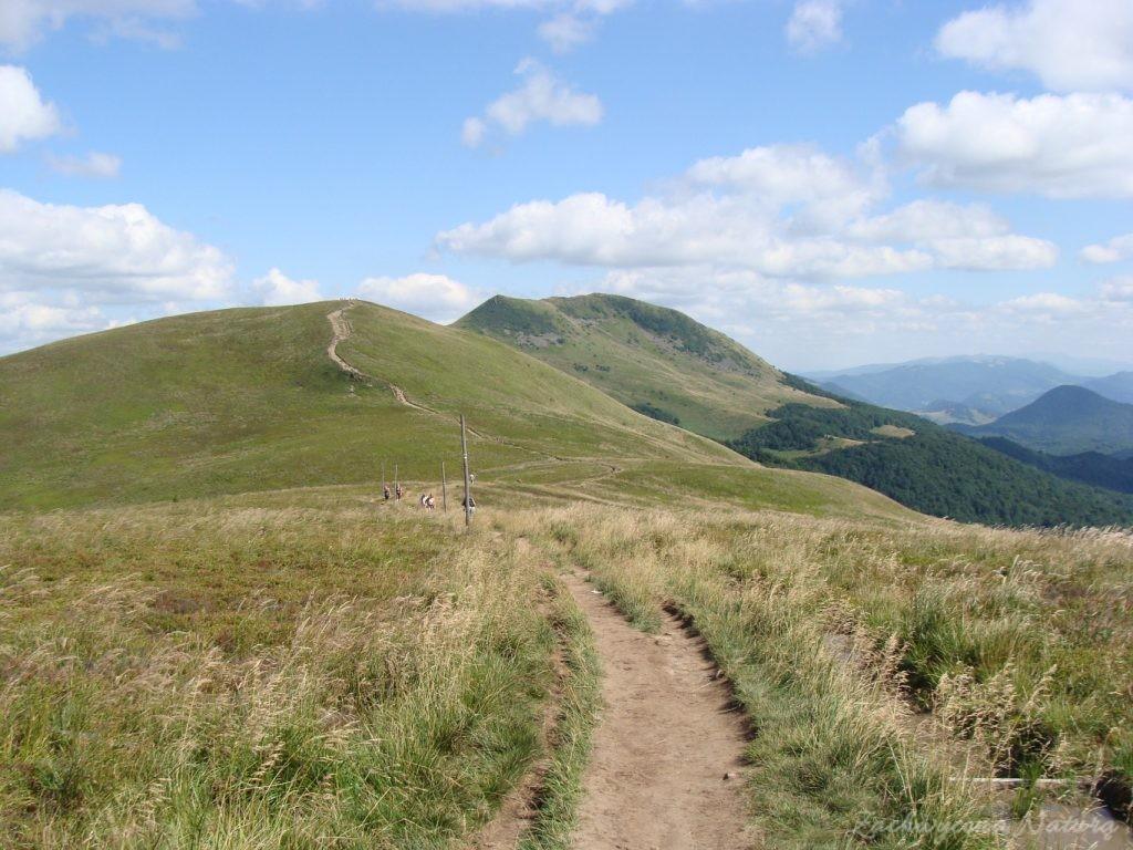 W drodze na Tarnicę (35)