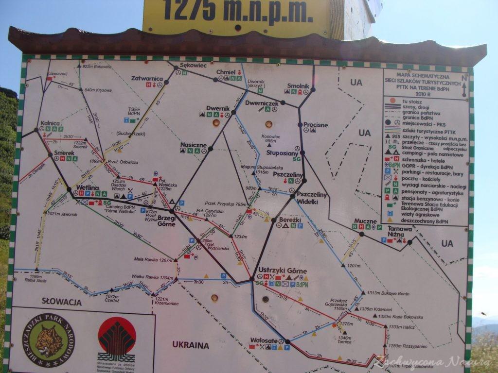 W drodze na Tarnicę (46)